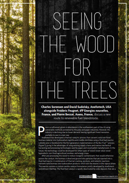 Thumb_Technical Article - seeing_the_wood_for_the_trees-English_HE_ March 2019_1